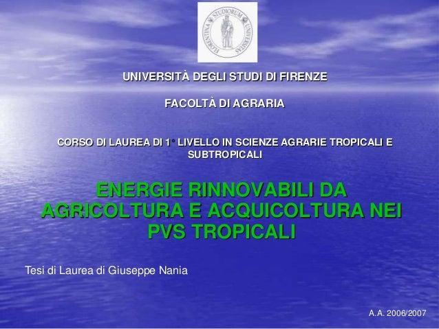 UNIVERSITÀ DEGLI STUDI DI FIRENZE FACOLTÀ DI AGRARIA  CORSO DI LAUREA DI 1 LIVELLO IN SCIENZE AGRARIE TROPICALI E SUBTROPI...