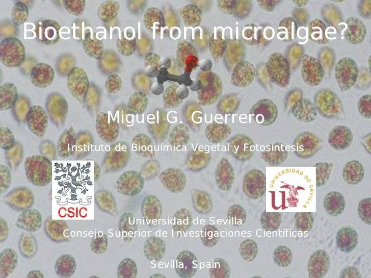 Bioethanol from microalgae