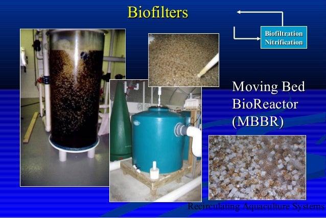 Biofiltration Nitrification Design Overview