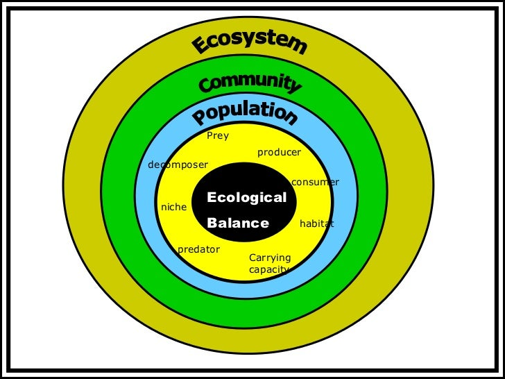 what are the components of demographic environment Changing population patterns such as changes in the community's average age should also be assessed owners for a business run by hired managers, the owners of the business become a part of the company's external rather than internal environment.
