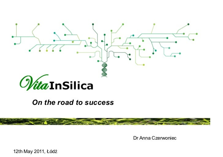 VitaInSilica - On the road to success.