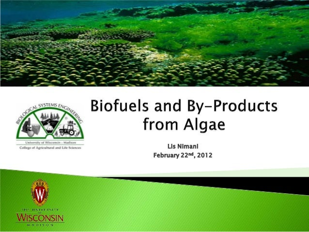 Biofuels and By-Products from Algae