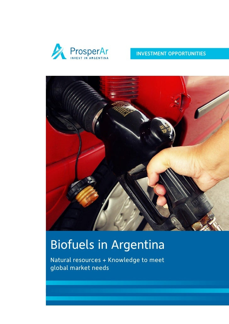 INVESTMENT OPPORTUNITIES     Biofuels in Argentina Natural resources + Knowledge to meet global market needs