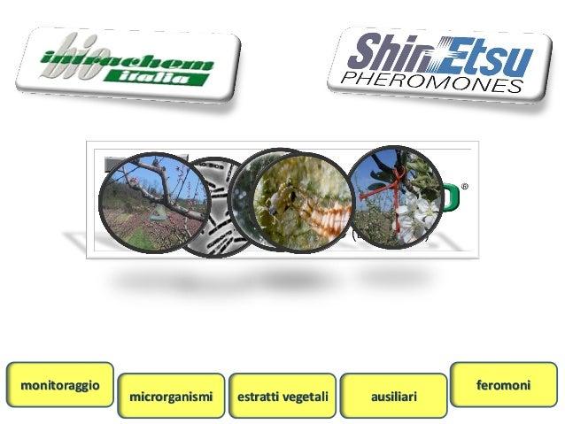 monitoraggio                                                   feromoni               microrganismi   estratti vegetali   ...