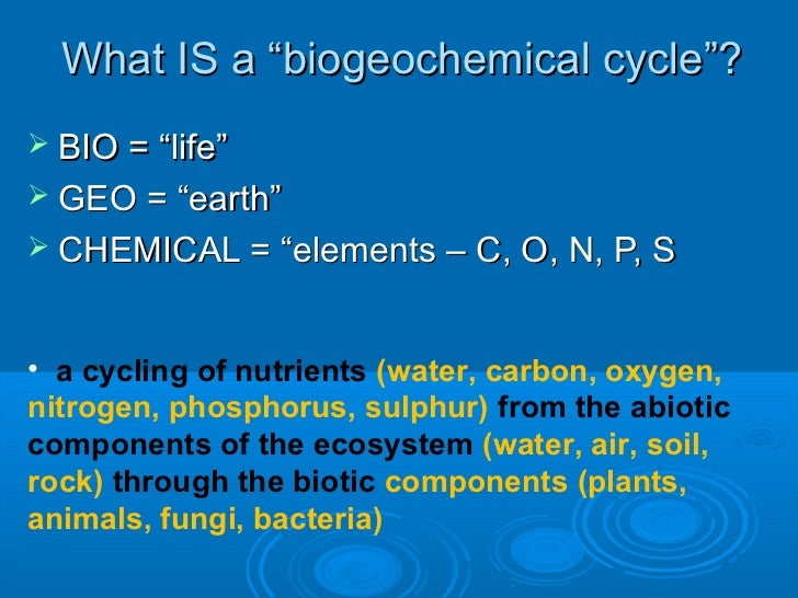 describe biogeochemical cycles carbon nitrogen essay Ecology/biogeochemical cycles from wikibooks, open books for an open world the most important biogeochemical cycles are the carbon cycle, nitrogen cycle.