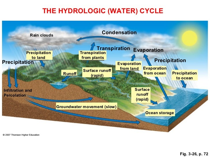Biogeochemical Cycles Water Nitrogen Carbon