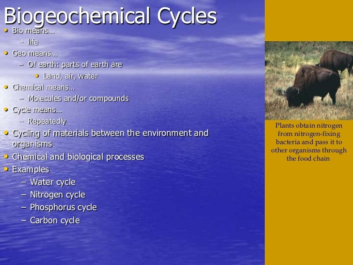 Biogeochemical Cycles•   Bio means…      – life•   Geo means…      – Of earth: parts of earth are           • Land, air, w...