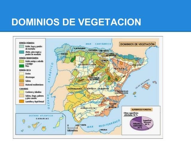 DOMINIOS DE VEGETACION