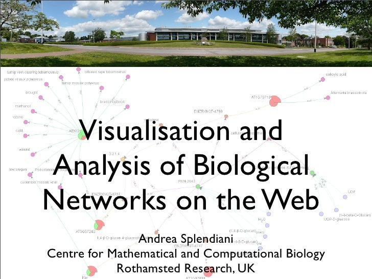 Visualisation and Analysis of Biological Networks on the Web                 Andrea Splendiani Centre for Mathematical and...