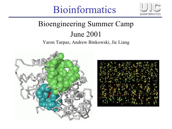 Bioinformatics <ul><li>Bioengineering Summer Camp </li></ul><ul><li>June 2001 </li></ul><ul><li>Yaron Turpaz, Andrew Binko...