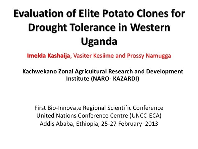 Evaluation of Elite Potato Clones for   Drought Tolerance in Western              Uganda  Imelda Kashaija, Vasiter Kesiime...