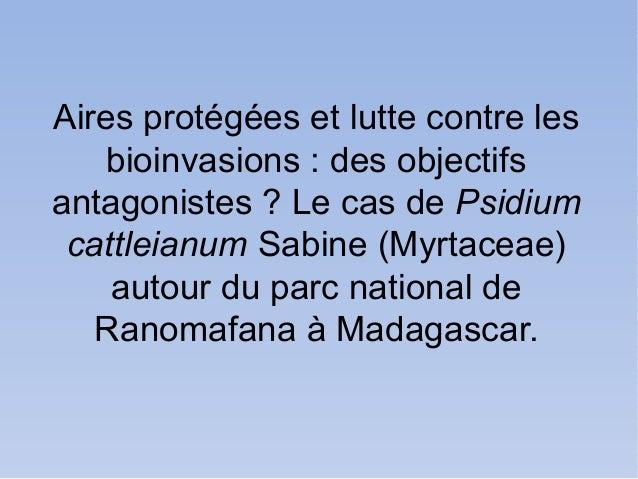 Aires protégées et lutte contre les    bioinvasions : des objectifsantagonistes ? Le cas de Psidium cattleianum Sabine (My...