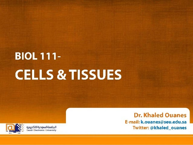 Physiology and Anatomy Essentials: CELLS & TISSUES.