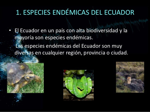 especies endémicas del ecuador el ecuador en un país