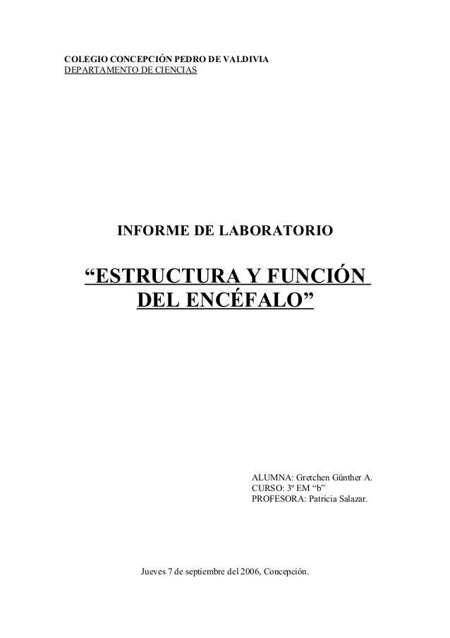 """COLEGIO CONCEPCIÓN PEDRO DE VALDIVIADEPARTAMENTO DE CIENCIAS         INFORME DE LABORATORIO   """"ESTRUCTURA Y FUNCIÓN       ..."""