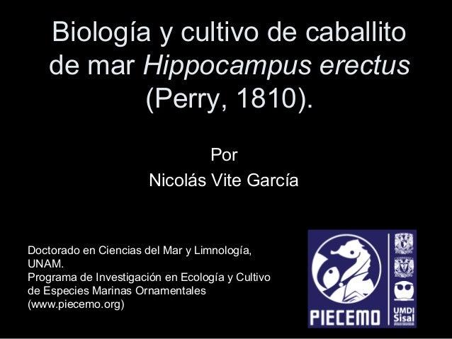 Biología y cultivo de caballito de mar Hippocampus erectus (Perry, 1810). Por Nicolás Vite García  Doctorado en Ciencias d...