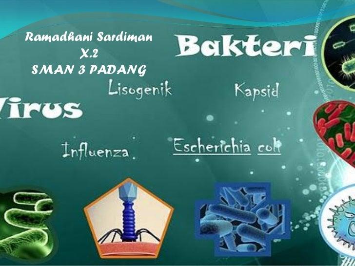 Biologi - Replikasi Virus