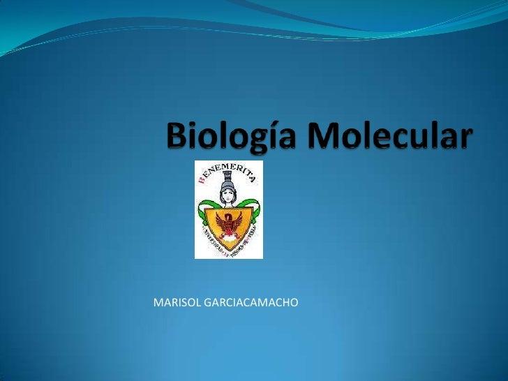 Biología Molecular<br />MARISOL GARCIACAMACHO<br />