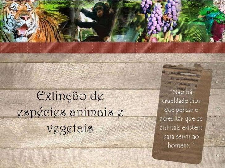 Desaparecimento de espécies animais e vegetais