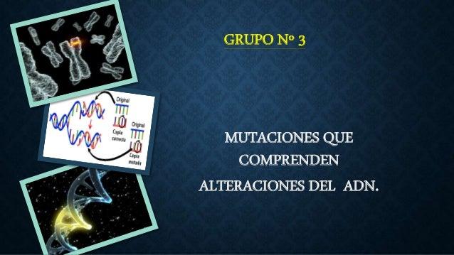 GRUPO Nº 3  MUTACIONES QUE  COMPRENDEN  ALTERACIONES DEL ADN.