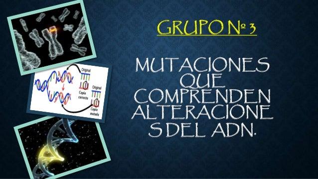 GRUPO Nº 3  MUTACIONES  QUE  COMPRENDEN  ALTERACIONE  S DEL ADN.