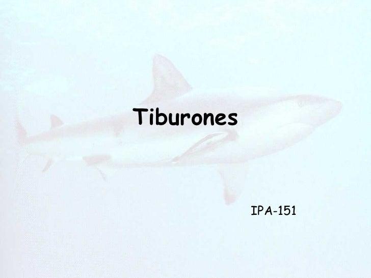 Tiburones IPA-151