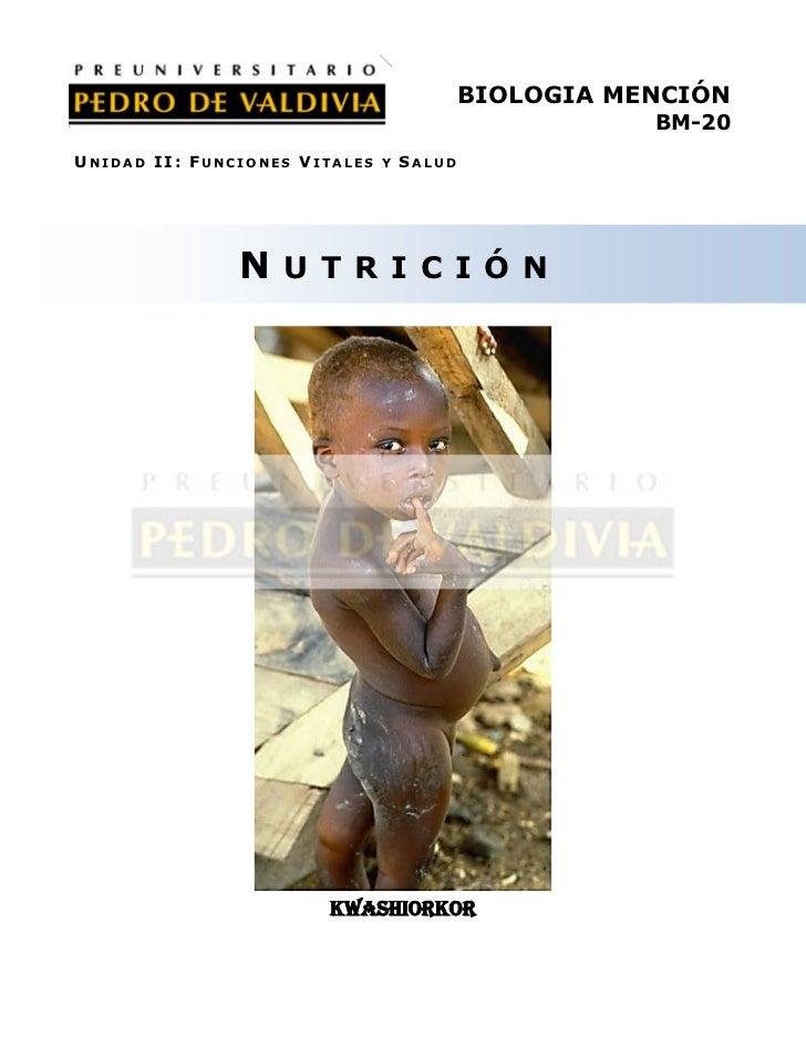 PDV: Biología Mención Guía N°19 [4° Medio] (2012)