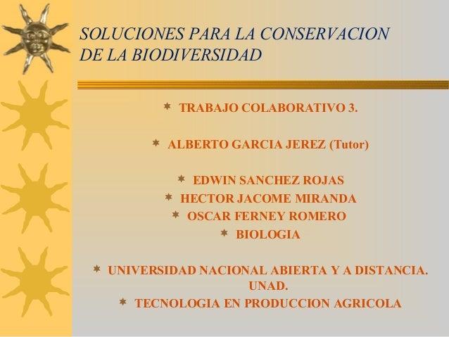 SOLUCIONES PARA LA CONSERVACIONDE LA BIODIVERSIDAD TRABAJO COLABORATIVO 3. ALBERTO GARCIA JEREZ (Tutor) EDWIN SANCHEZ R...