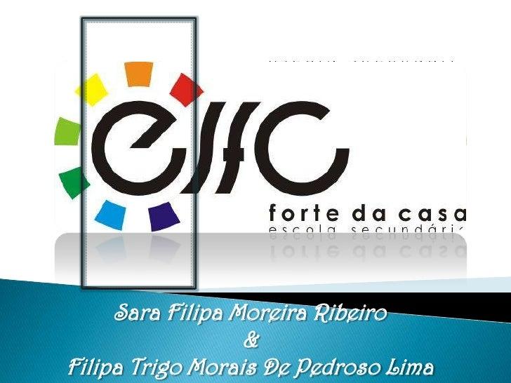 Sara Filipa Moreira Ribeiro                  &Filipa Trigo Morais De Pedroso Lima