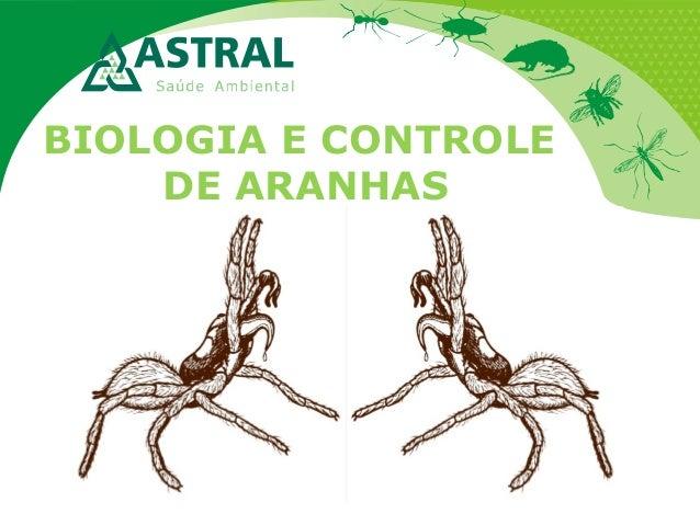 BIOLOGIA E CONTROLE DE ARANHAS
