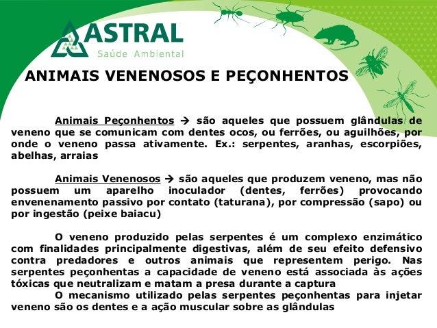 ANIMAIS VENENOSOS E PEÇONHENTOS Animais Peçonhentos  são aqueles que possuem glândulas de veneno que se comunicam com den...