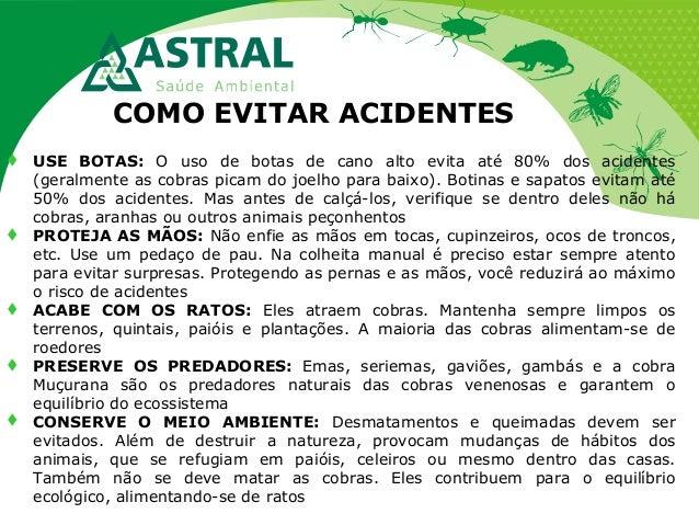 COMO EVITAR ACIDENTES  USE BOTAS: O uso de botas de cano alto evita até 80% dos acidentes (geralmente as cobras picam do ...