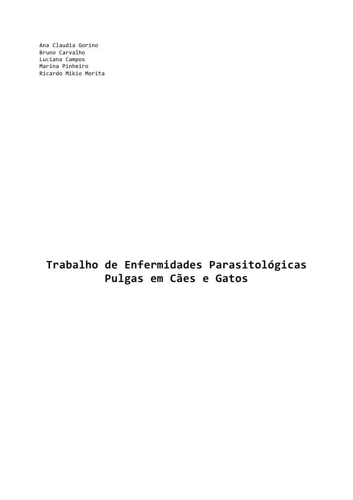 Ana Claudia Gorino<br />Bruno Carvalho<br />Luciana Campos<br />Marina Pinheiro<br />Ricardo Mikio Morita<br />Trabalho de...
