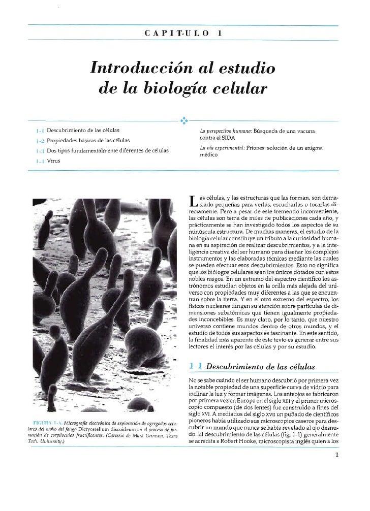 CAPIT-ULO                      1                             Introducción al estudio                              de la bi...