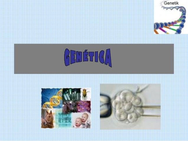 CONTINUIDAD DE LAS           ESPECIES• La mitosis y la meiosis son procesos que  aseguran que la información genética  pas...