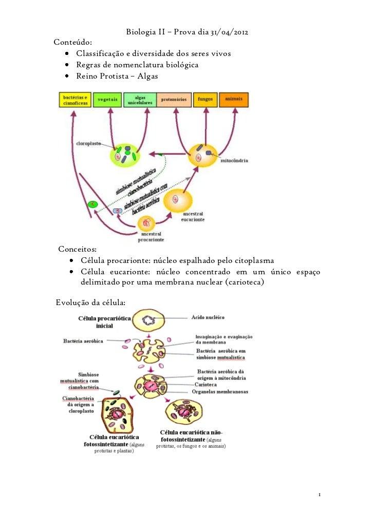 Biologia II – Prova dia 31/04/2012Conteúdo:     Classificação e diversidade dos seres vivos     Regras de nomenclatura bio...