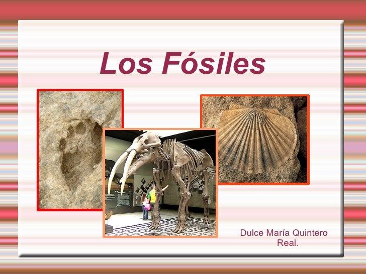 Los Fósiles Dulce María Quintero Real.