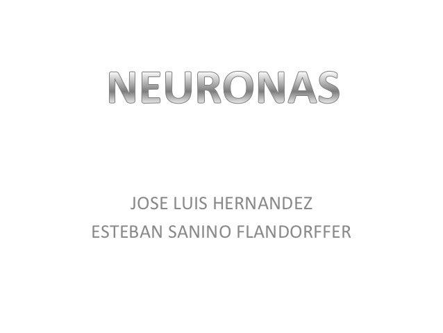 JOSE LUIS HERNANDEZESTEBAN SANINO FLANDORFFER