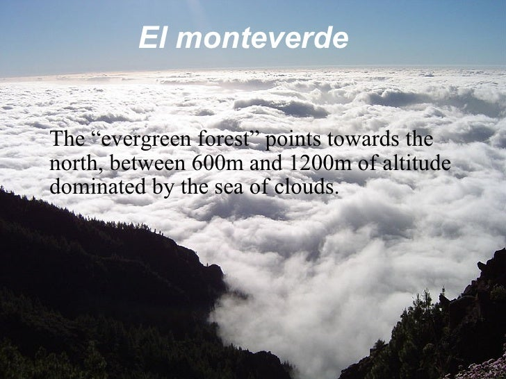 """El monteverde The """"evergreen forest"""" points towards the north, between 600m and 1200m of altitude dominated by the sea of ..."""