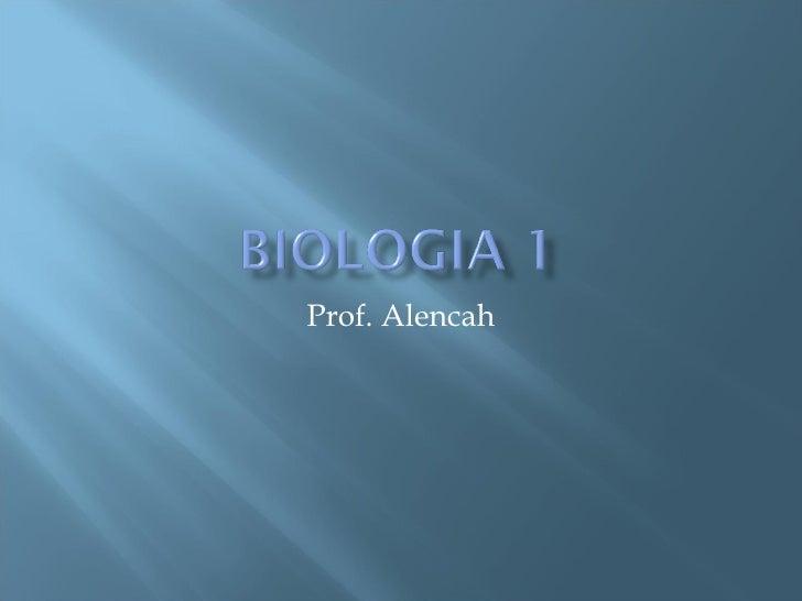 Prof. Alencah