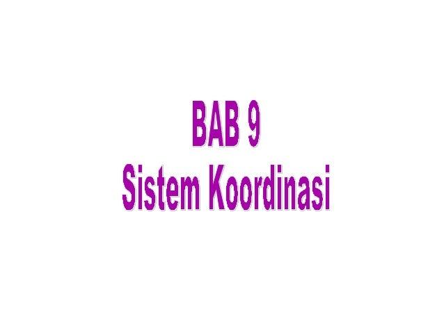 SISTEM SARAF   Termasuk sistem pengendali   Merupakan rangkaian organ yang kompleks membentuk    sistem terdiri dari jar...