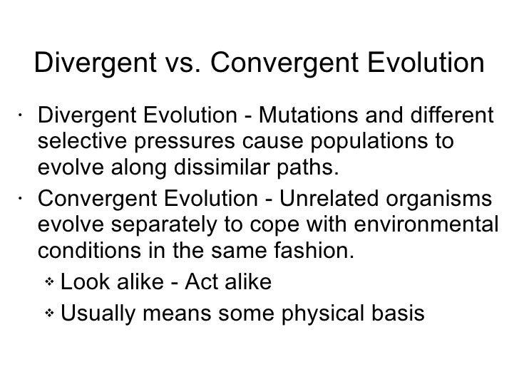Convergent Evolution vs Divergent Divergent vs Convergent