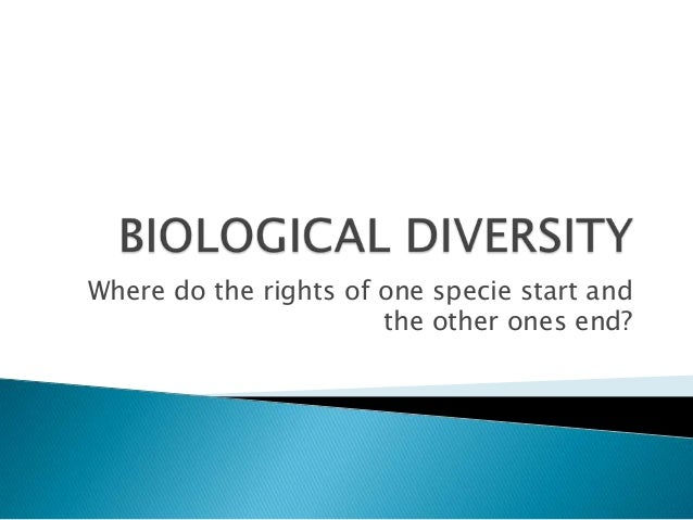 Where do the rights of one specie start and                       the other ones end?