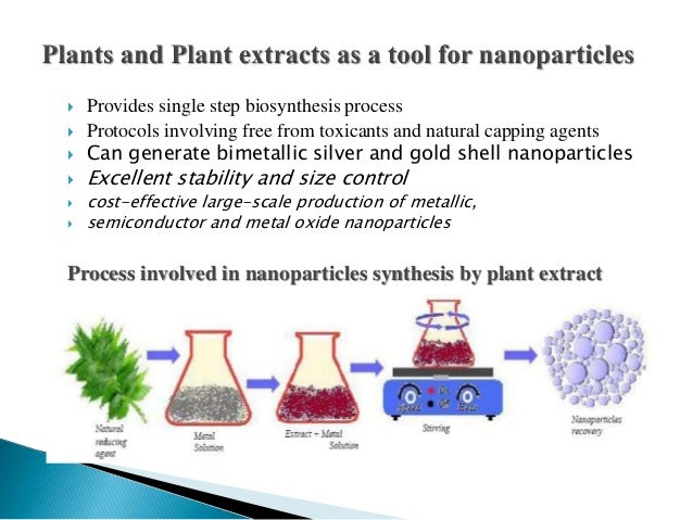 thesis on biological synthesis of nanoparticles Of biological species that have not been studied earlier thesis of metallic nanoparticles have been reported synthesis of nanoparticle makes it possible to.