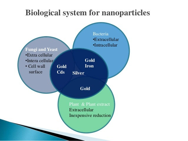Physical And Chemical Properties Of Nanoparticles