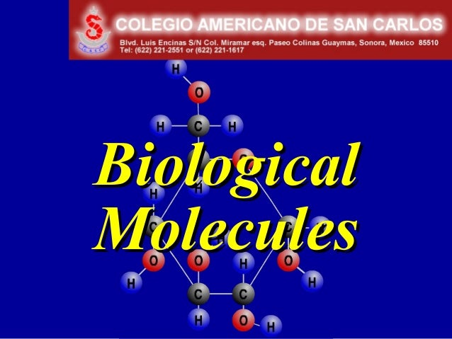 Chapter 3BiologicalMolecules
