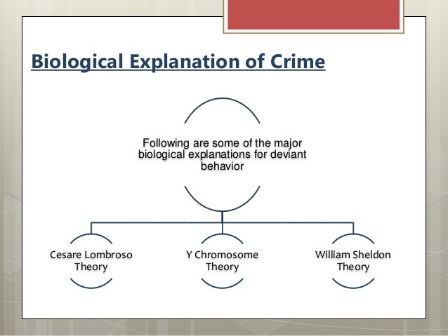 biological theories of crime essays Excerpt from essay : biological theories, sociological theories, and psychological theories of crime biological explanations of criminal behavior lombroso's theory dates back to the late 1800s, and is not widely accepted today.