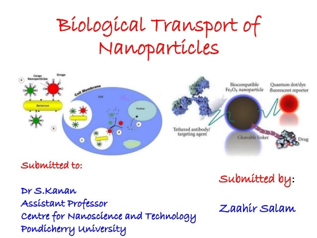 Biological Transport of Nanoparticles  Submitted to: Dr S.Kanan Assistant Professor Centre for Nanoscience and Technology ...