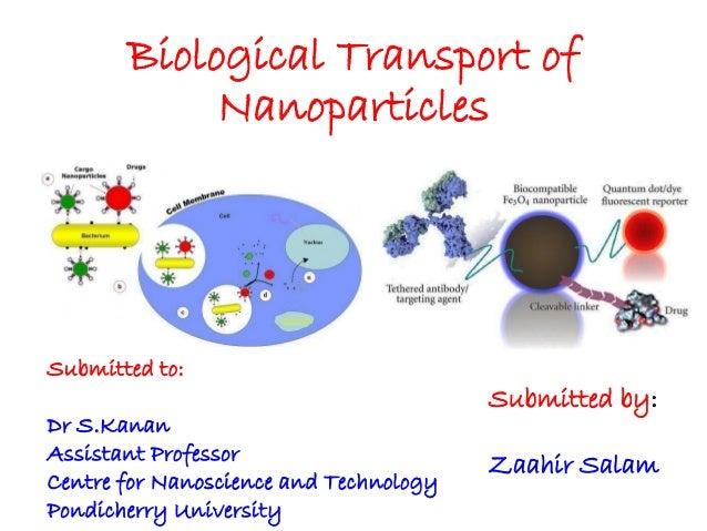 Biological transport of nanoparticles