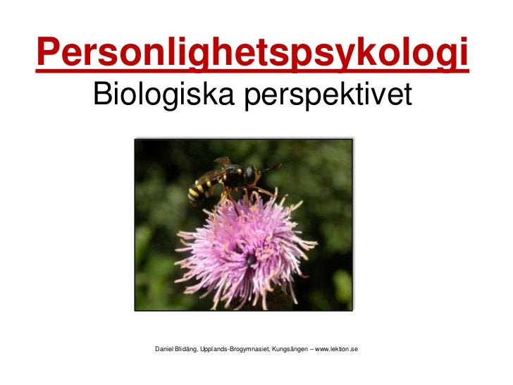 PersonlighetspsykologiBiologiska perspektivet<br />Daniel Blidäng, Upplands-Brogymnasiet, Kungsängen – www.lektion.se<br />